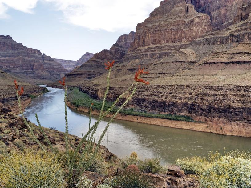 Arizona landscape, river running through Grand Canyon